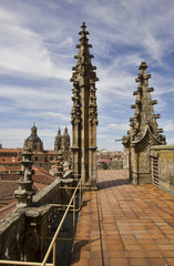Old Cathedral of Salamanca, Spain