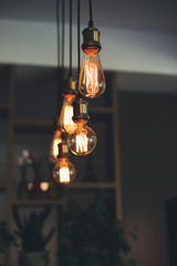 Edison bulbs light design, modern loft interior
