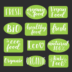 Labels with vegetarian and raw food diet designs. Organic food tags and elements set for meal and drink, cafe, restaurants and organic products packaging. Vector illustrated bio detox logo.