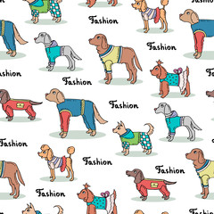 Vector seamless pattern with hand drawn colored dogs. Background for use in design