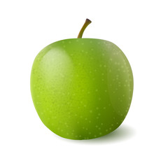 Vector photo-realistic green juicy apple. 3d design object