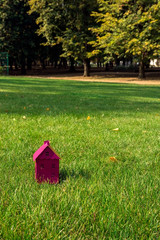 The layout of the magenta house  on green space
