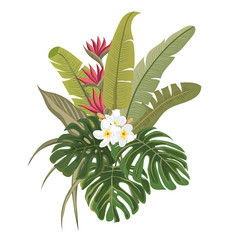 Palm leaves and tropical flowers. Tropical bouquet. Isolated plant on a white background.