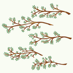 Set of hand-drawn and painted branches with leaves. Vector graphics.