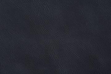 Natural dark blue skin texture.