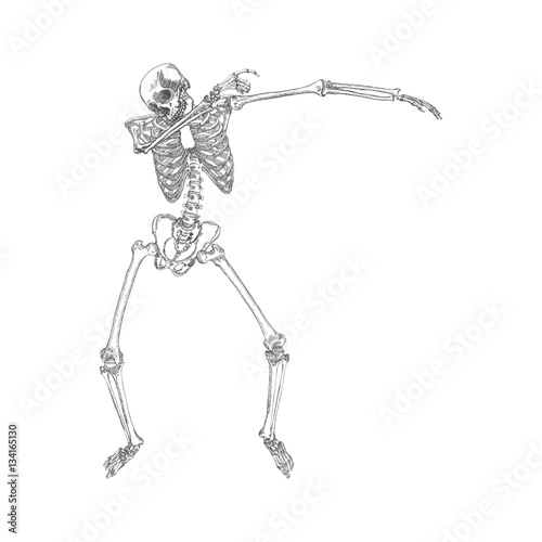 u0026quot human skeleton posing dab  perform dabbing dance move