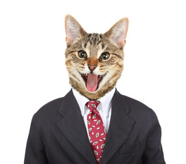 Smiling cat in a Business Suit