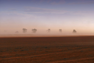 Dust storm in outback Australia on rural farm with crops in paddock in Mallee