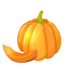 Colorful cartoon illustration of pumpkin on a white background. Vector.