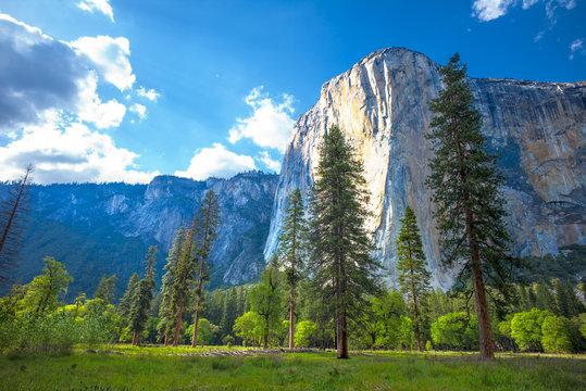El Capitan Yosemite National Park, California, USA.  View from El Capitan Meadow.