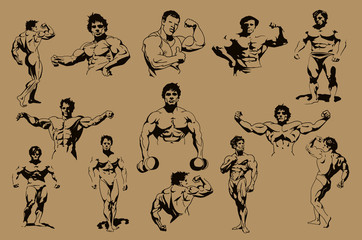Set of blue color bodybuilders isolated on brown background, bodybuilding