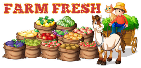 Farm fresh products and farmer