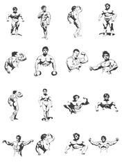 Set of bodybuilders isolated on white background, bodybuilding