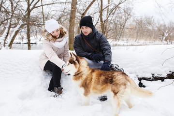 A young pregnant couple walking in the woods with the dog red Husky.