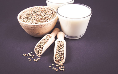 Hemp milk, seeds on the dark background . Close Up .