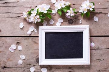 Empty blackboard  and tender apple tree flowers on aged vintage