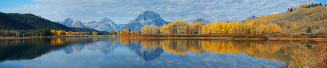 Wall Murals Honey Autumn landscape in Yellowstone, Wyoming, USA