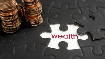 Word wealth under jigsaw puzzle piece