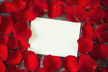 close- up red rose petals frame over empty card.