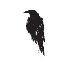 Black raven on a white background.
