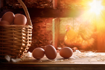 Freshly picked eggs in basket with chicken within henhouse backg