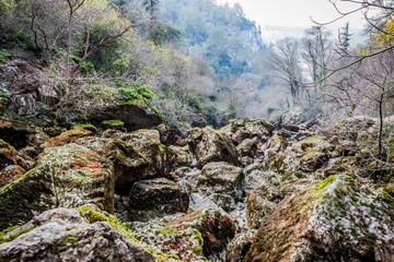 Le lit de la Sorgue vers le gouffre de Fontaine-de-Vaucluse