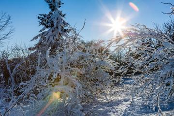 verschneite Wnterlandschaft