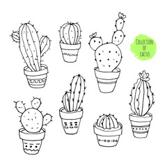 Vector collection of cactus. Hand drawn cartoon Illustration.
