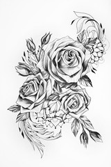 Sketch of beautiful roses on a white background.