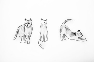 Sketch of various cats on a white background.