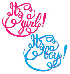 Its a girl, boy lettering. Baby shower vector invitation