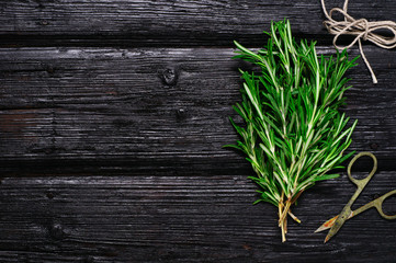 branches of fresh rosemary on an old black wooden background