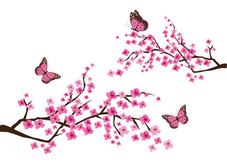 Vector Cherry Blossom