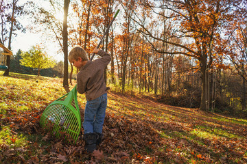 Young boy raking autumn leaves