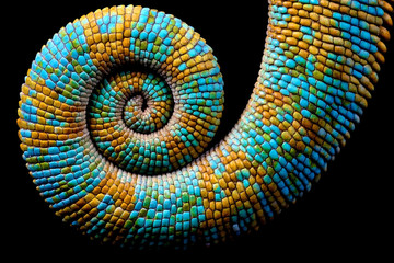 The coiled blue and yellow tail of a lizard.