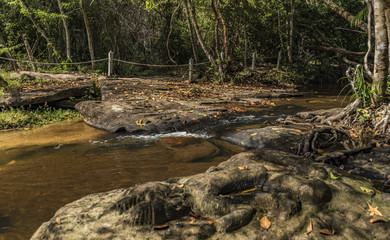 Kbal Spean waterfall and jungle in Cambodia mountains