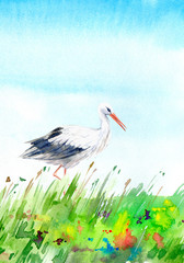 Landscape with field and stork. Summer image. Watercolor hand drawn illustration.