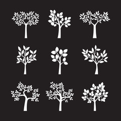 Set of White Trees and Leafs. Vector Illustration.