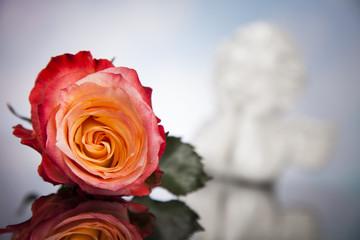 Angel, Happy Valentine's Day, mirror background