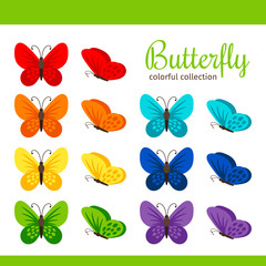 Colorful butterfly collection vector illustration. Spring butterflies isolated on white background