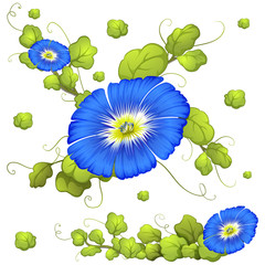 Seamless background with blue morning glory flowers