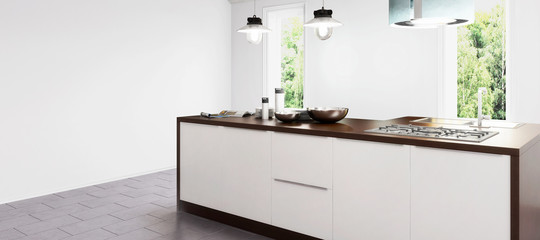 New kitchen in concept (panoramic)