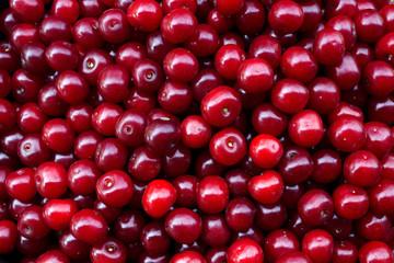 berry cherry