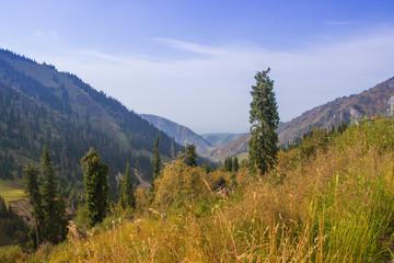 Tuyk su gorge near Shymbulak ski resort. Tien Shan mountains at
