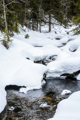 Winter stream with deep snow and water flows underneath. Early spring with melting snow in mountain landscape.