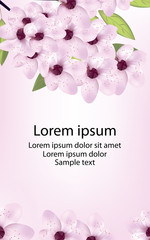 Card with cherry or sakura blossom and text. Vector