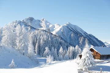 Fototapete - Verschneite Winterlandschaft, Austrian Alps