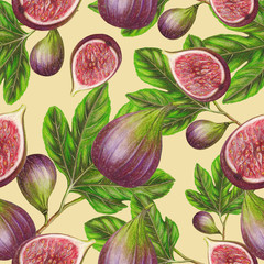 Seamless pattern of hand drawn fig