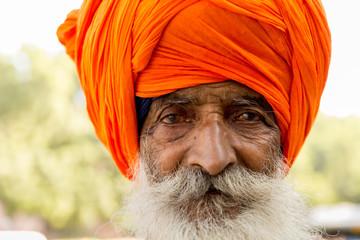 Close-up of Sikh Man, Punjab, India