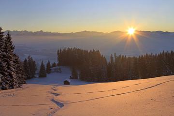 Tiefschnee-Abfahrt in der Abendsonne - Allgäu - Winter